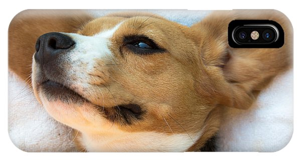 Beagles Dreams IPhone Case