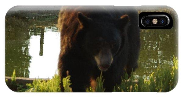 Bear 1 IPhone Case