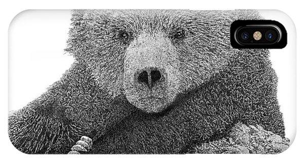 Bear 2 IPhone Case