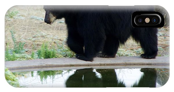 Bear 2 IPhone Case