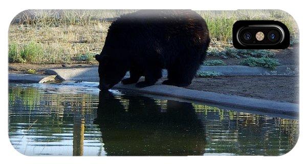 Bear 4 IPhone Case