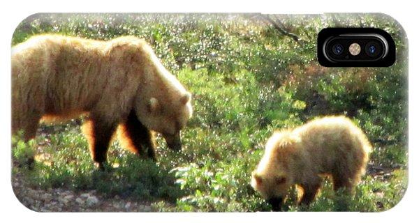 Bear And Cub At Denali IPhone Case