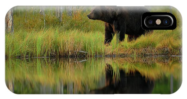 Brown iPhone Case - Bear And Fish *** by Assaf Gavra