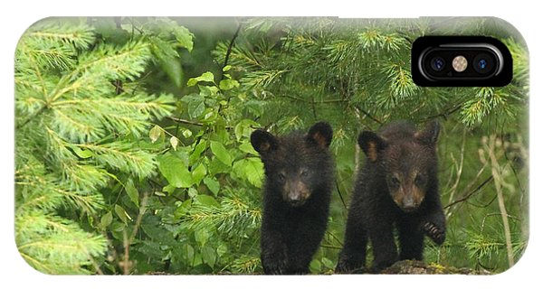 Bear Buddies IPhone Case