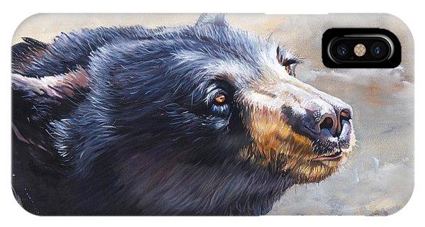 Four Winds Bear IPhone Case