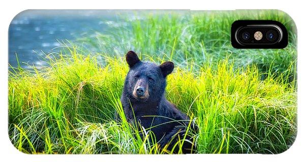 Bear Grass IPhone Case