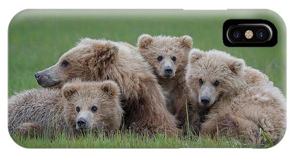 Hug iPhone Case - Bear Huddle by Renee Doyle