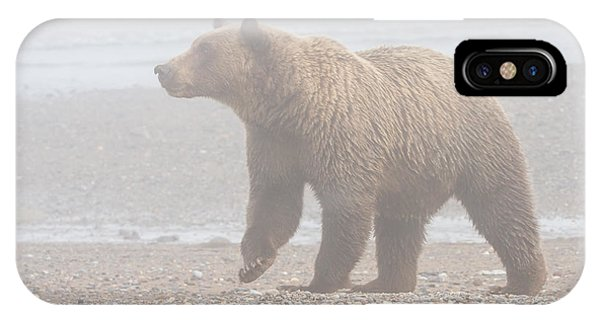 Bear In Fog IPhone Case