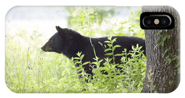 Bear In The Meadow IPhone Case