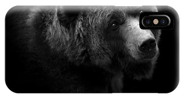 Black And White iPhone X Case - Portrait Of Bear In Black And White by Lukas Holas