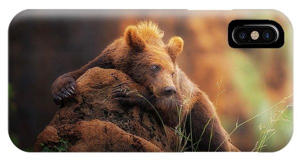 Hug iPhone Case - Bear Portrait by Sergio Saavedra Ruiz