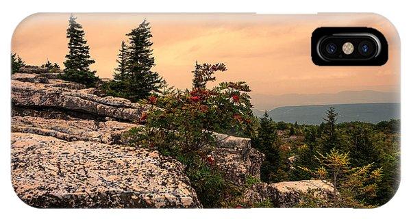 Bear Rocks Sunset IPhone Case