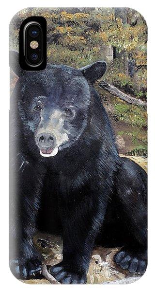 Bear - Wildlife Art - Ursus Americanus IPhone Case