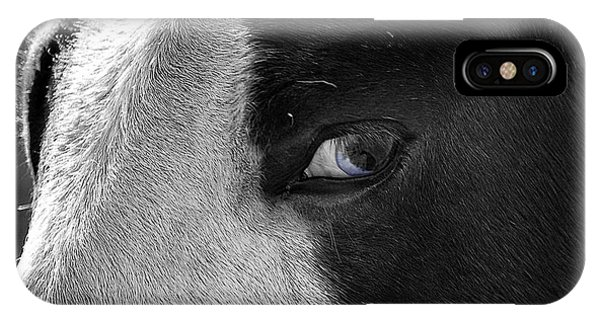 Beautiful Blind Soul Horse IPhone Case