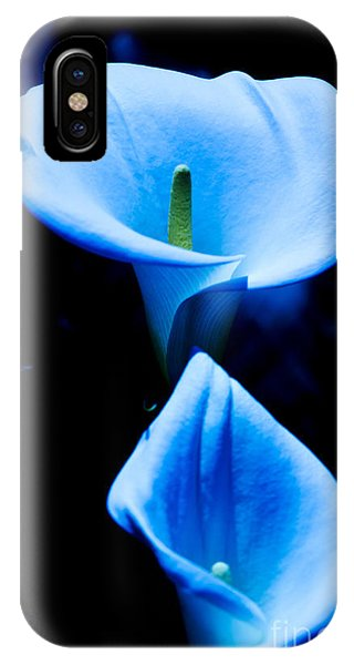 Beautiful Blue Calla Lilies IPhone Case
