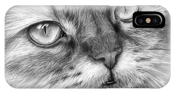 Graphite iPhone Case - Beautiful Cat by Olga Shvartsur