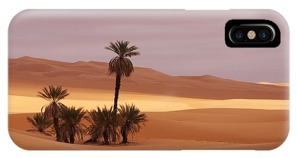 Beautiful Desert IPhone Case