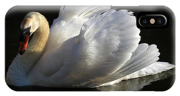 Swan iPhone Case - Beautiful Display by Donna Kennedy