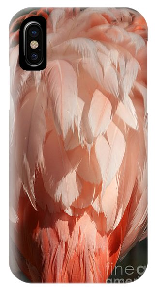 Beautiful Feathers IPhone Case