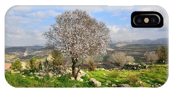Beautiful Flowering Almond Tree IPhone Case