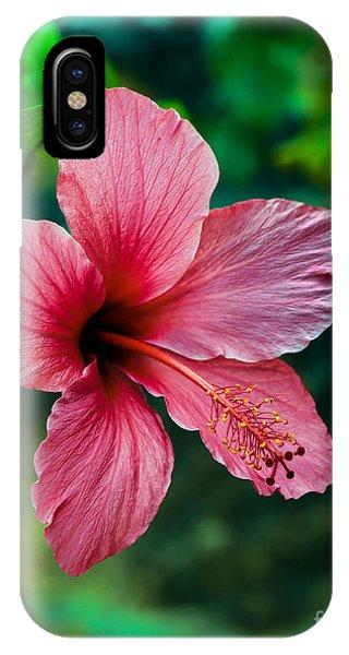 Beautiful Hummingbird iPhone Case - Beautiful Hibiscus by Robert Bales