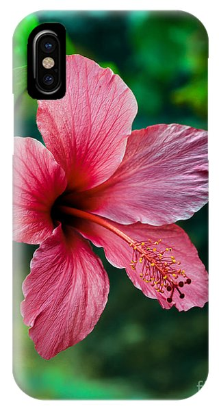 Yellow Trumpet iPhone Case - Beautiful Hibiscus by Robert Bales