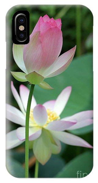 Beautiful Lotus Blooming IPhone Case