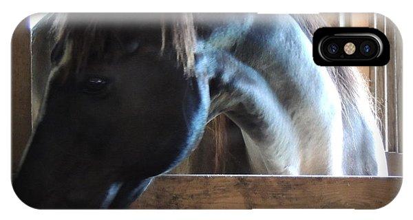 beautiful Niijjii at Blue Horse Rescue IPhone Case