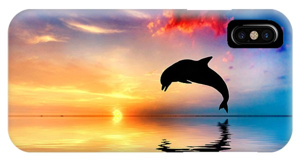 Beautiful Ocean And Sunset With Dolphin Jumping IPhone Case
