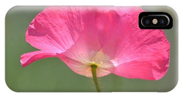 Beautiful Pink Poppy Flower IPhone Case