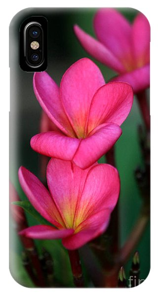 Beautiful Red Plumeria IPhone Case