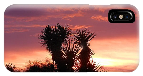 Beautiful Sunset In Arizona IPhone Case