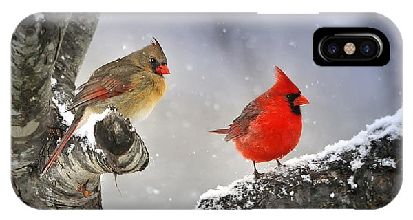 Beautiful Together IPhone Case