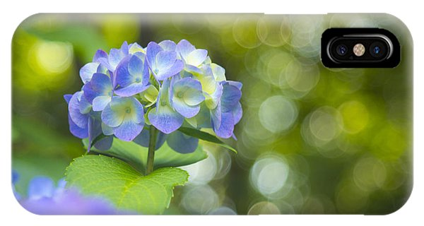 Beautiful Violet Hydrangea With Green Leaves And Bokeh Lights IPhone Case