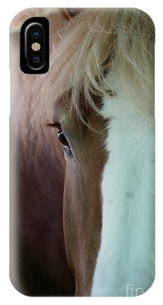 IPhone Case featuring the photograph Beautiful Within Him Was The Spirit - 1 by Linda Shafer