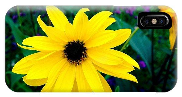 Petals iPhone Case - Beautiful Yellow Flower by Matthias Hauser