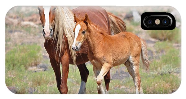 Beauty And Her Foal IPhone Case