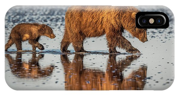 Brown Bear iPhone Case - Beauty And The Beast by Jeffrey C. Sink