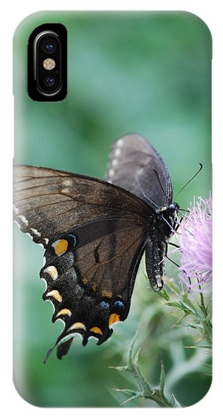 Beauty And Thistle IPhone Case