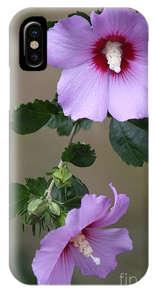 Beauty Doubles IPhone Case