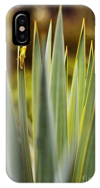 Beauty Grasshopper IPhone Case