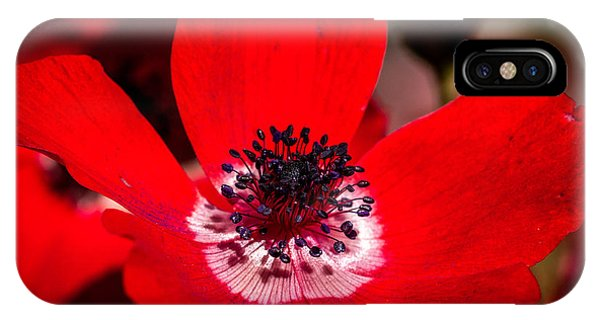 Beauty In Red IPhone Case