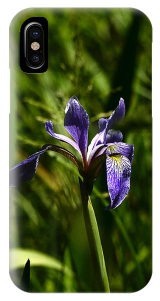 Beauty In The Grass IPhone Case