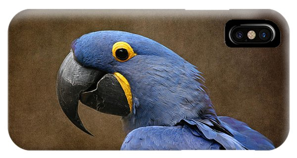 Beauty Is An Enchanted Soul - Hyacinth Macaw - Anodorhynchus Hyacinthinus IPhone Case