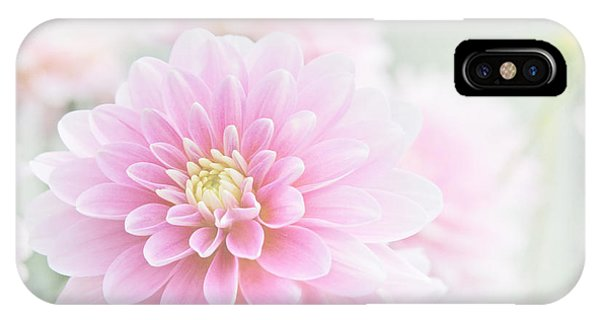 Beauty Iv IPhone Case