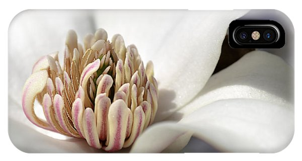 Beauty Of A Merrill Magnolia IPhone Case