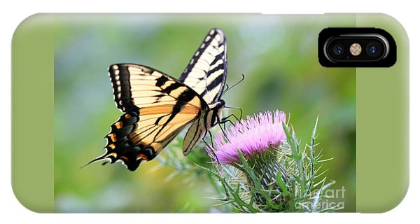Beauty On Wings IPhone Case