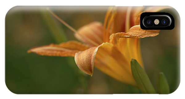 Beauty - Tiger Lily Art Print IPhone Case
