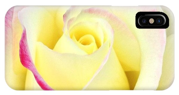 Petals iPhone Case - Beauty Unfurled by Anna Porter