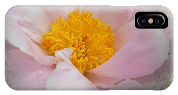 IPhone Case featuring the photograph Beauty Woven In by Judy Hall-Folde